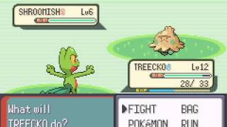 Pokemon Emerald - Vizzed.com GamePlay - Bug Catcher Lyle Battle - Route 104 - User video