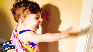 Baby Reaction ★ Babies Scared of Their Shadow   Funny And Fails Videos