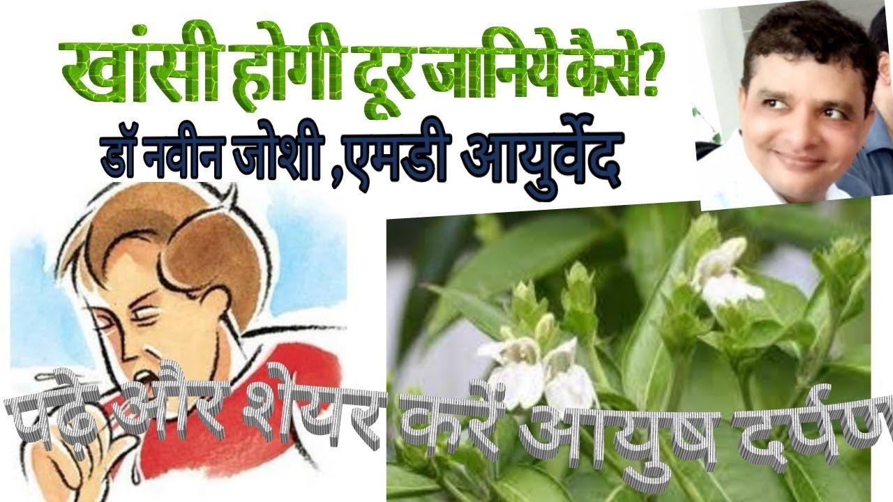 Medicinal Importance of Vasaka/Vasa/Adhatoda (Adhatoda vasica)