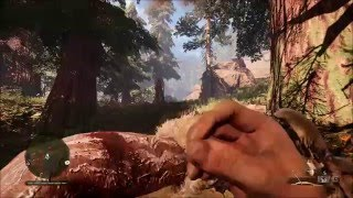 Far Cry Primal - Healing Animation | Free Roam Gameplay (PC HD) [1080p60FPS]