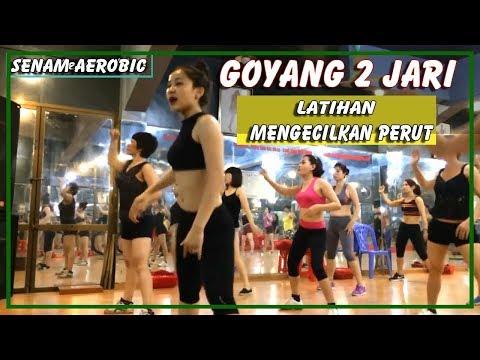 Image Result For Download Lagu Goyang Dua Jari Mp