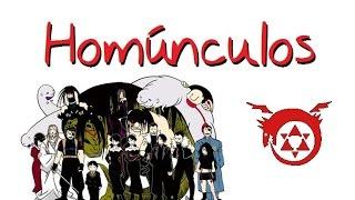 Homúnculos FMA: Diferencias manga y anime
