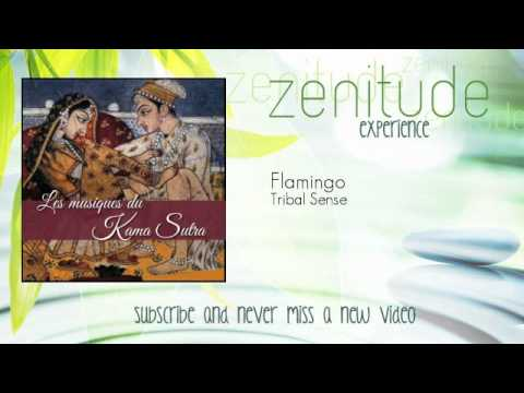 Kama Sutra Music - Tribal Sense - Flamingo - ZenitudeExperience