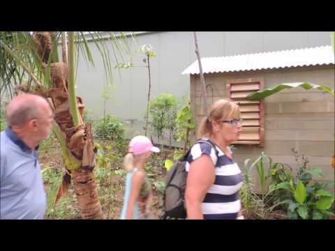 Mijn film   Burgers Zoo mangrove   22 juli 2017