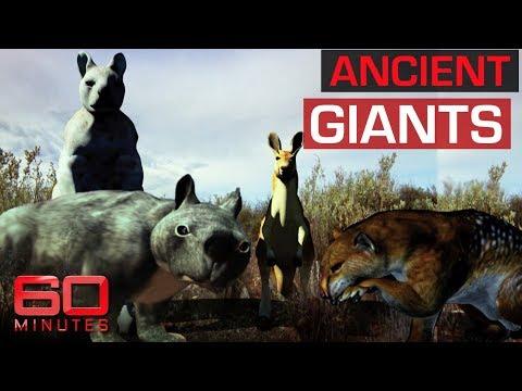 Giant species that