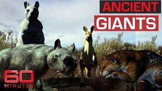 Giant species that used to roam the outback | 60 Minutes Australia