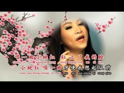 [Josephine Chee 徐玉珠] 回想曲 -- 那些年代的经典金曲 (Official MV)