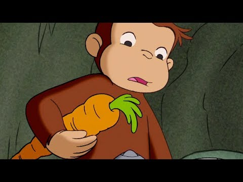 Curious George 🐵The Perfect Carrot  🐵 Kids Cartoon 🐵 Kids Movies | Videos for Kids