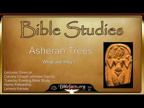 What are Asherah Trees?