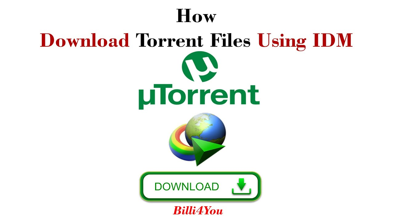 idm download in torrent