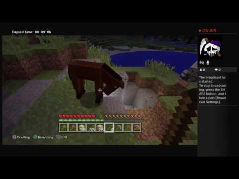 Minecraft ChillStream