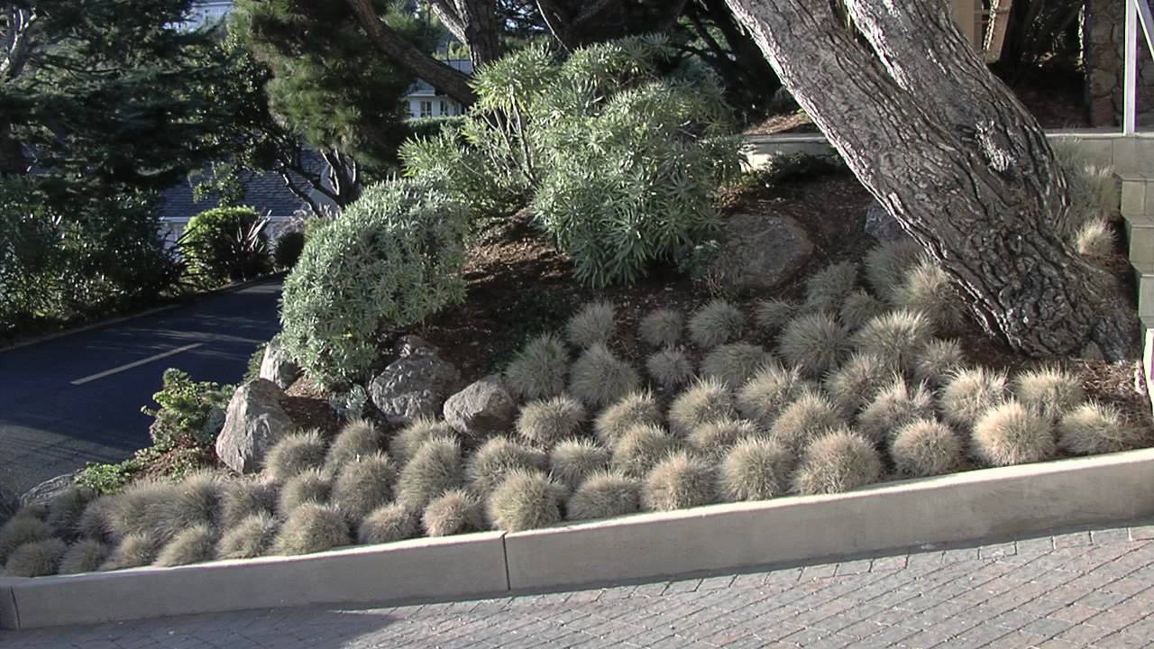 Luxury Landscaping Blog Phoenix Az Outside Living Concepts