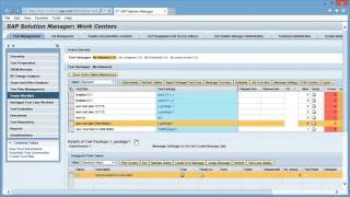 SAP Solution Manager Test Steps Add On  Demo Video