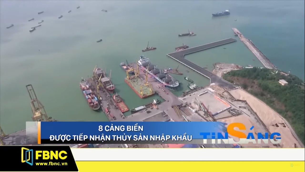 8 cảng biển Việt Nam được tiếp nhận thủy sản nhập khẩu | FBNC TV Giờ Tin Sáng 11/11/19
