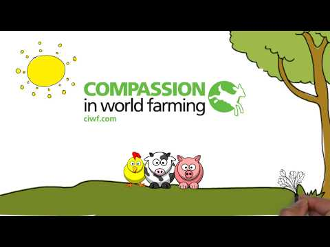 Impact Calculator by Compassion in World Farming