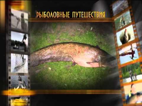 Игра русская рыбалка. Скачать бесплатно новую версию