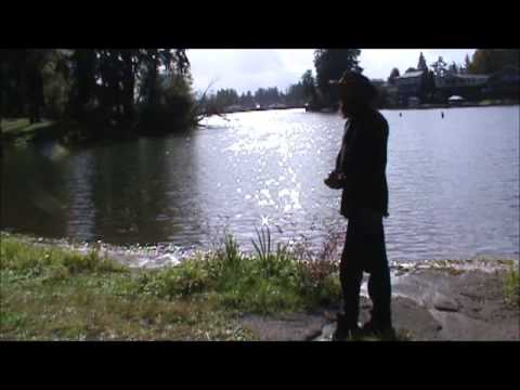 The Degradation Of Spanaway Lake
