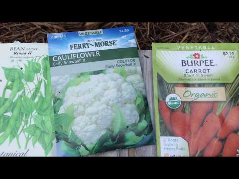 Cool Season Crops - What I'm Planting For Fall