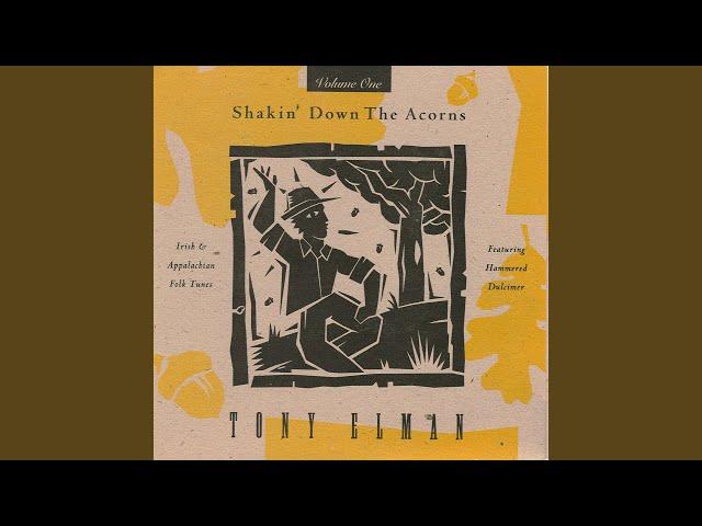 Devil's Dream/Flowers of Edinburgh/Drowsy Maggie