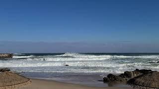 양양 쏠비치 해변 겨울 파도소리(20.12)