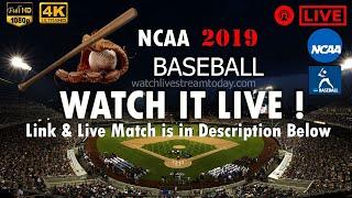 California VS. UCLA Baseball Men's College NCAA Live Stream