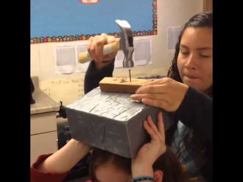 Newton's 1st Law Hammer/Nail Activity