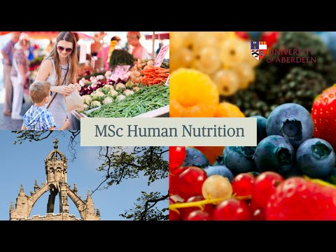 Human Nutrition | Postgraduate Taught Degrees | Study Here | The