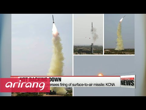 N. Korean leader oversees firing of surface-to-air missile: KCNA