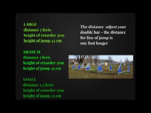 Agility Online - Jumping gymnastics - 1. line of jumps