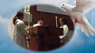 Thầy Phó Tế Đông Ngô  Pentecost Vigil Mass Cộng Đoàn Saint Cecilia Tustin California 2018