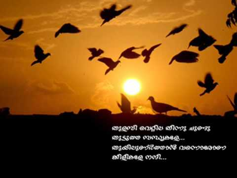 Ennodothunarunna Pularikale...... My fav songs 01