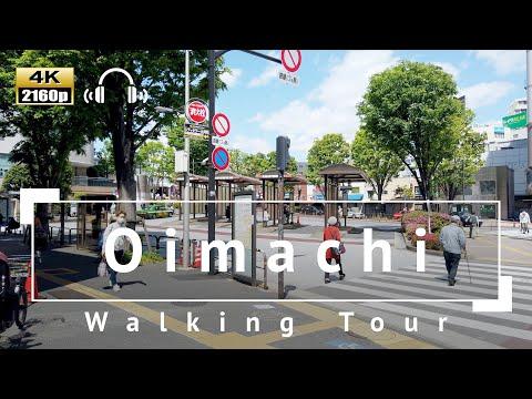 [4K/Binaural Audio] Oimachi