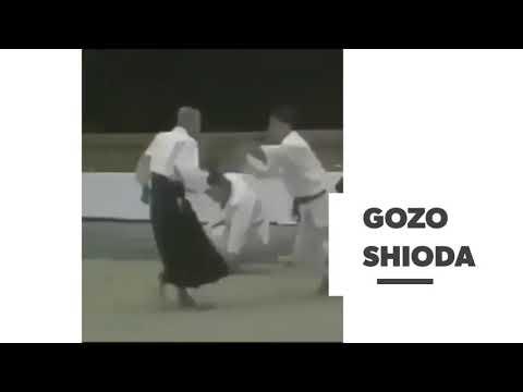 Aikido Yoshinkan -