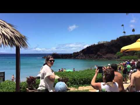 Tiger Shark Sighting - Black Rock, Kaanapali Beach, Maui, HI