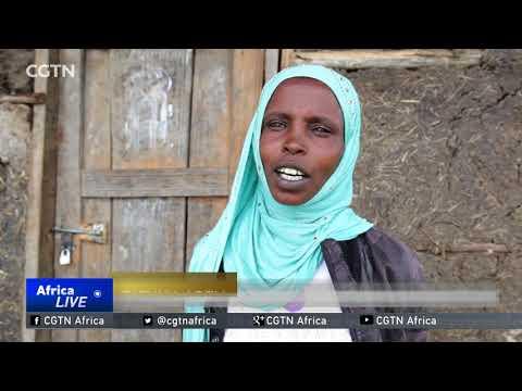 Farming skills training offers Oromia youth employment lifeline