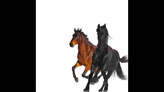 Baixar Old Town Road (feat. Billy Ray Cyrus) [Remix] (Clean Version) (Audio) - Lil Nas X