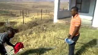 Xhosa boys stick fighting