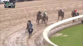 Race Replay: 2017 Smarty Jones