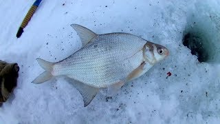 Зимняя рыбалка. Технология успеха 5 Не унывать.