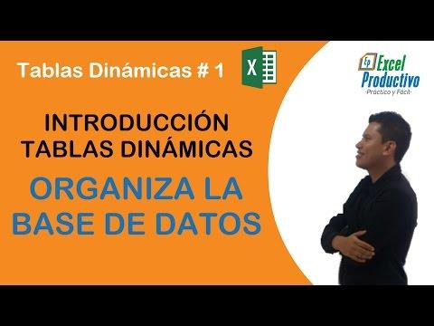 tablas-dinámicas-en-excel.-organizar-base-de-datos.-#-1
