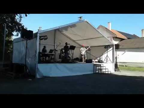 Riding With The King - B.B.King & Eric Clapton (live Cover The Freejays)