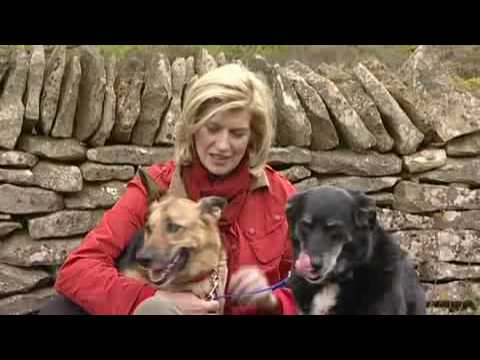 Catch up on the Latest News with Selina Scott
