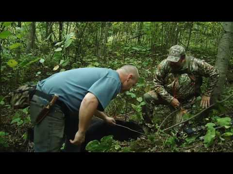 Wisconsin Black Bear Hunt