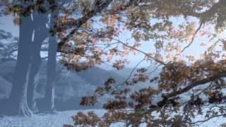 Maria Stader: Der Hirt auf dem Felsen by Schubert