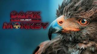 Gaga - The Birds (Fab Gayraud Remix) [Minimal Techno]