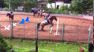 Конный спорт для детей. Пони-клуб Нева.