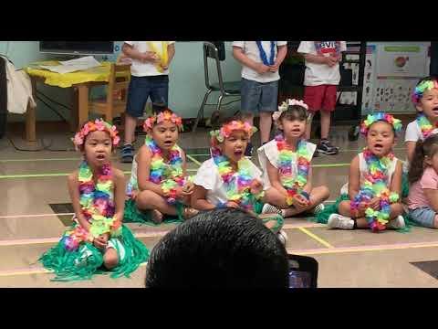 Pearly Shells ( Lassen Elementary School )