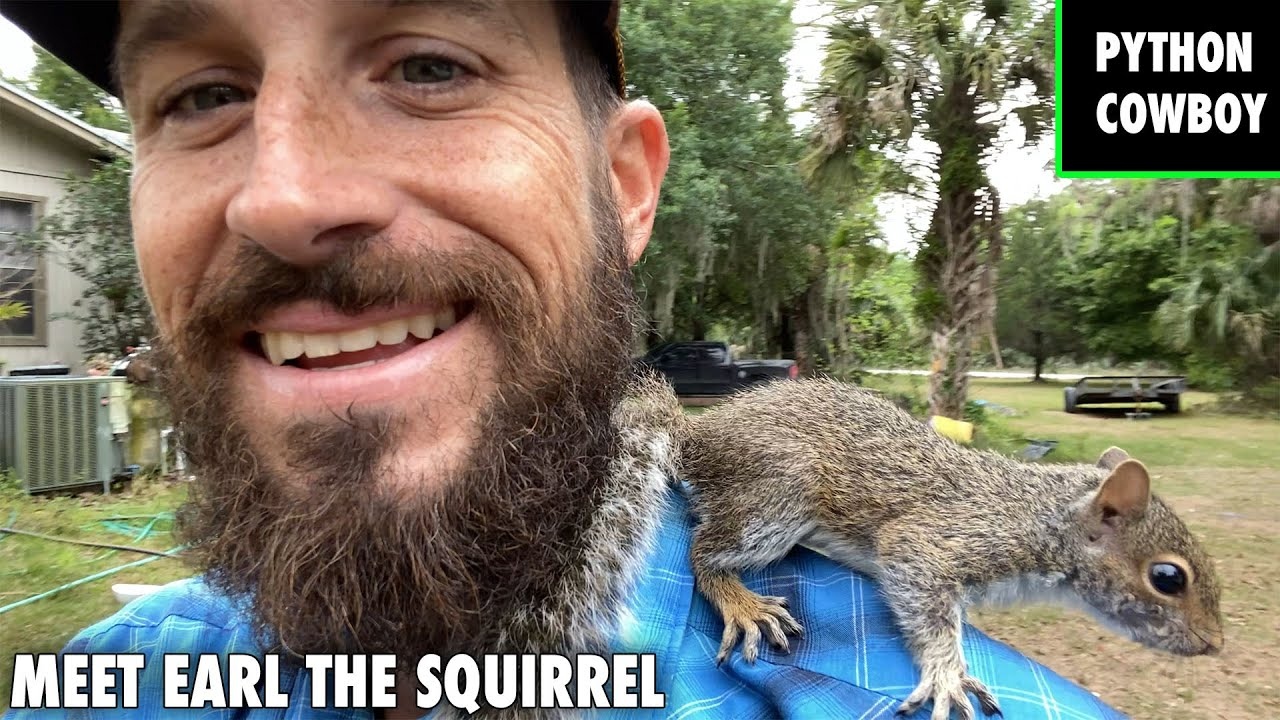 Meet Earl The Squirrel The Newest Member On The Ranch