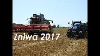 Żniwa Jęczmienne 2017|Niecierpliwi kierowcy vs Rolnicy| 7 Maszyn ㋡