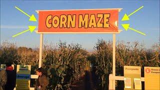 Edmonton Corn Maze - Sept 23rd, 2017
